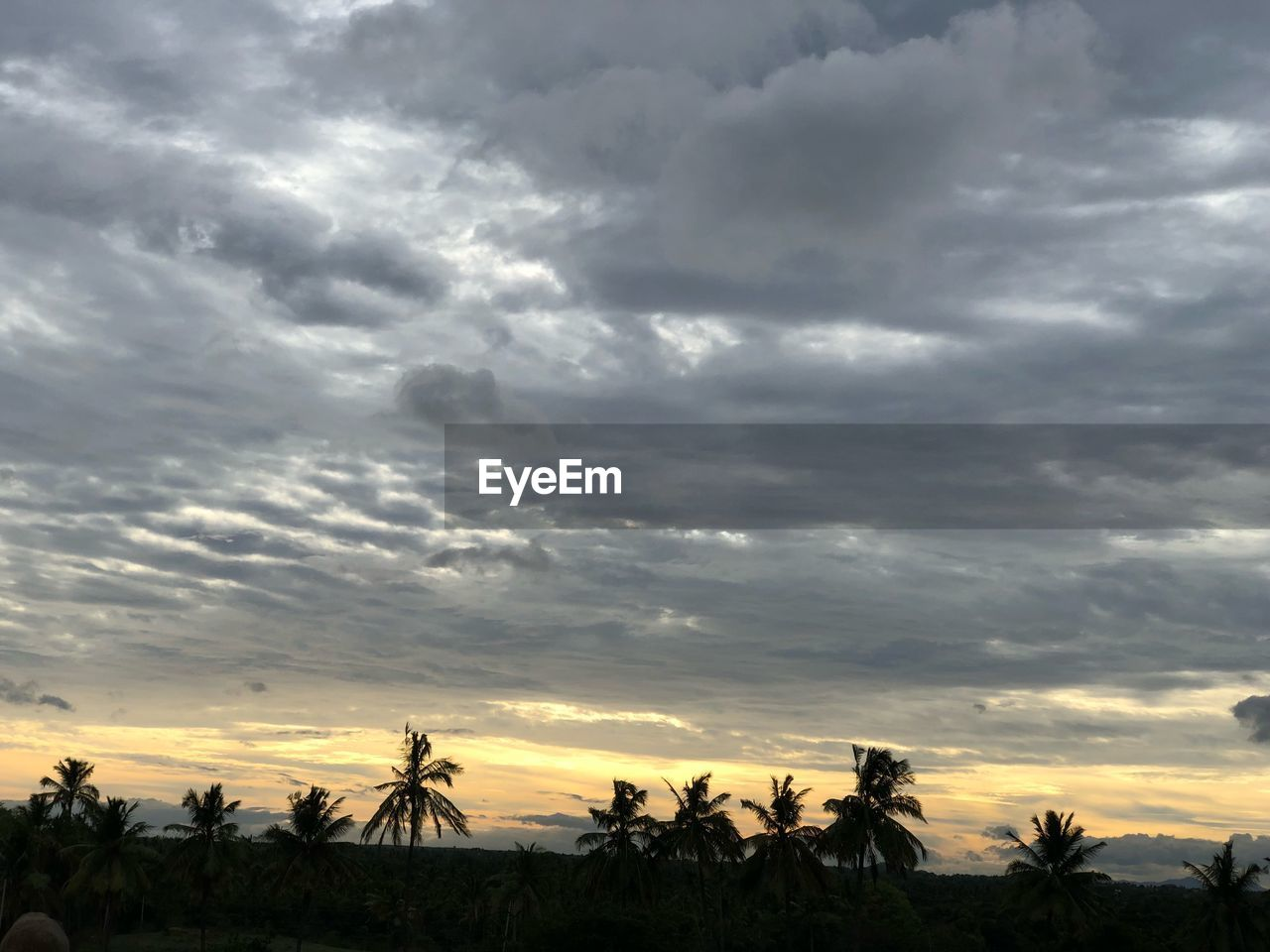 cloud - sky, sky, beauty in nature, sunset, scenics - nature, tree, tranquil scene, tranquility, plant, nature, palm tree, environment, landscape, non-urban scene, silhouette, tropical climate, land, idyllic, no people, outdoors, coconut palm tree