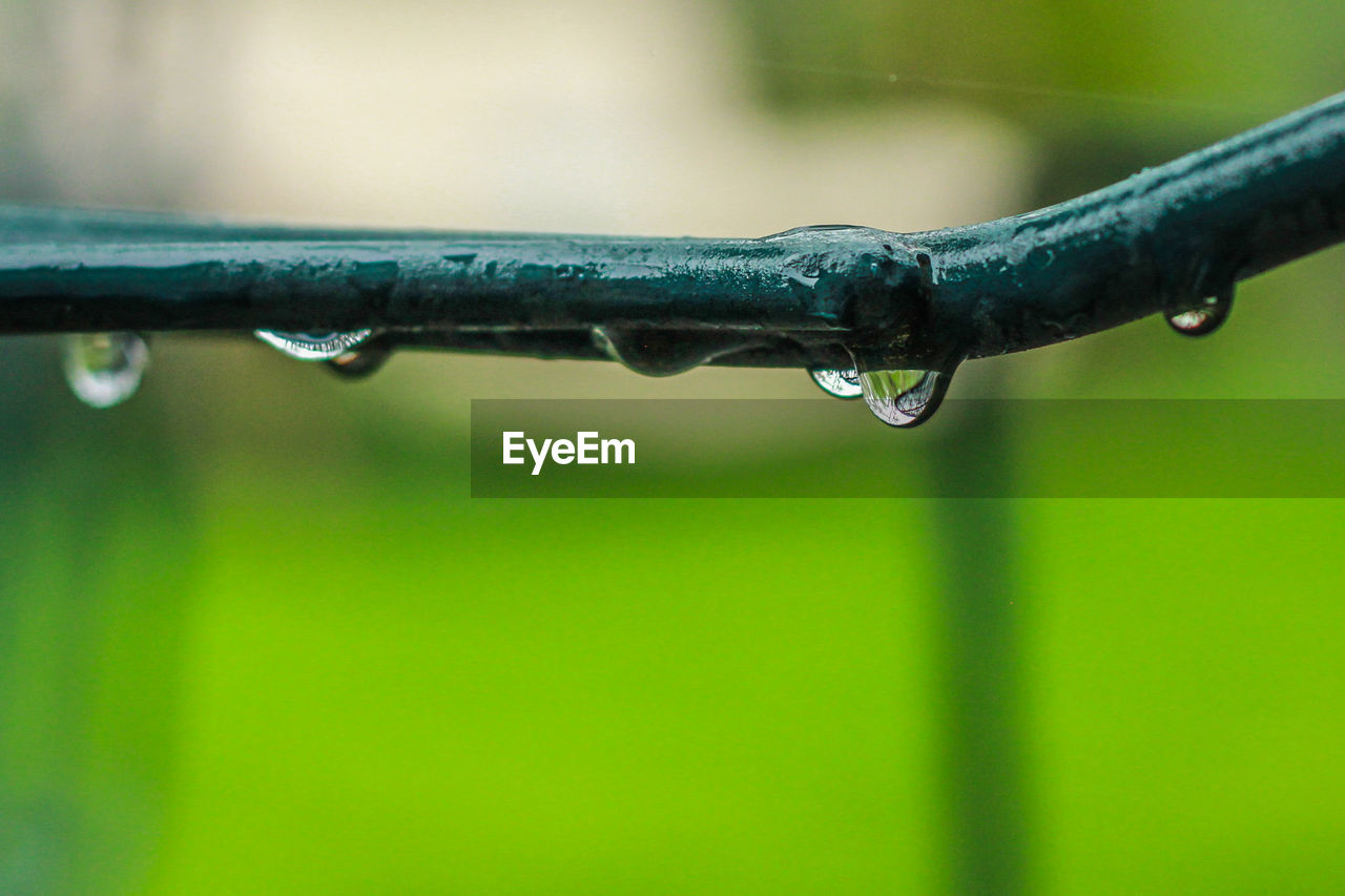drop, water, wet, close-up, no people, nature, focus on foreground, purity, rain, raindrop, green color, outdoors, day, plant, selective focus, rainy season, metal, falling, icicle, dew, blade of grass