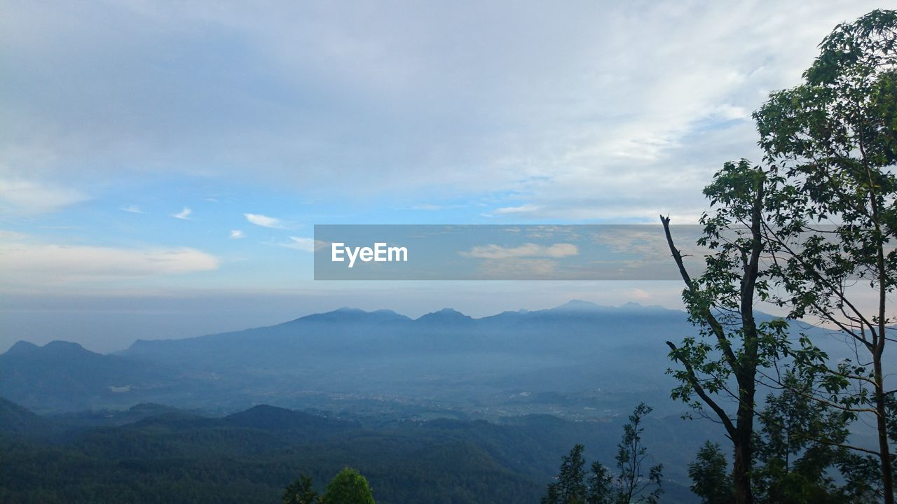 scenics - nature, mountain, cloud - sky, beauty in nature, sky, tranquil scene, tranquility, tree, mountain range, non-urban scene, plant, nature, idyllic, no people, day, environment, landscape, outdoors, fog, travel destinations
