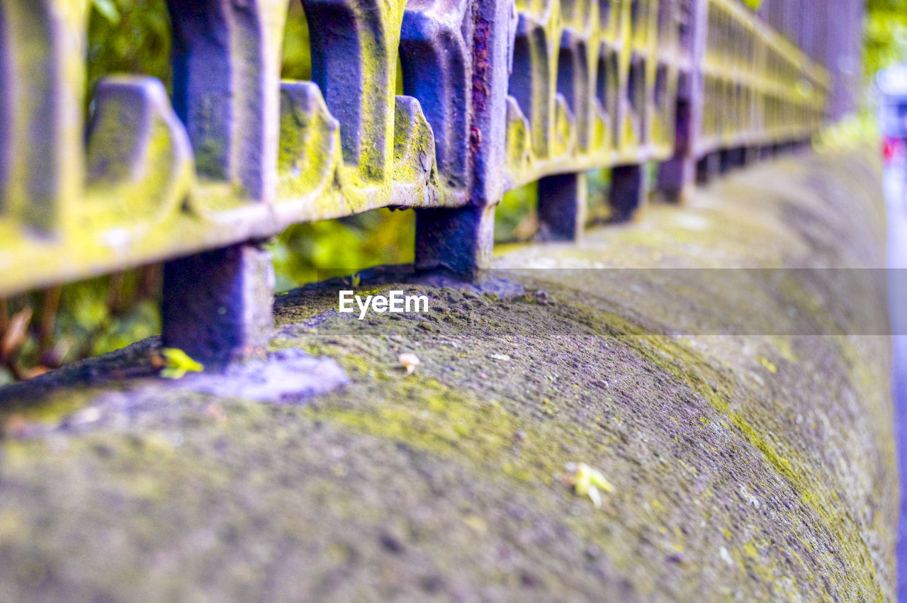 selective focus, in a row, no people, day, close-up, outdoors, nature