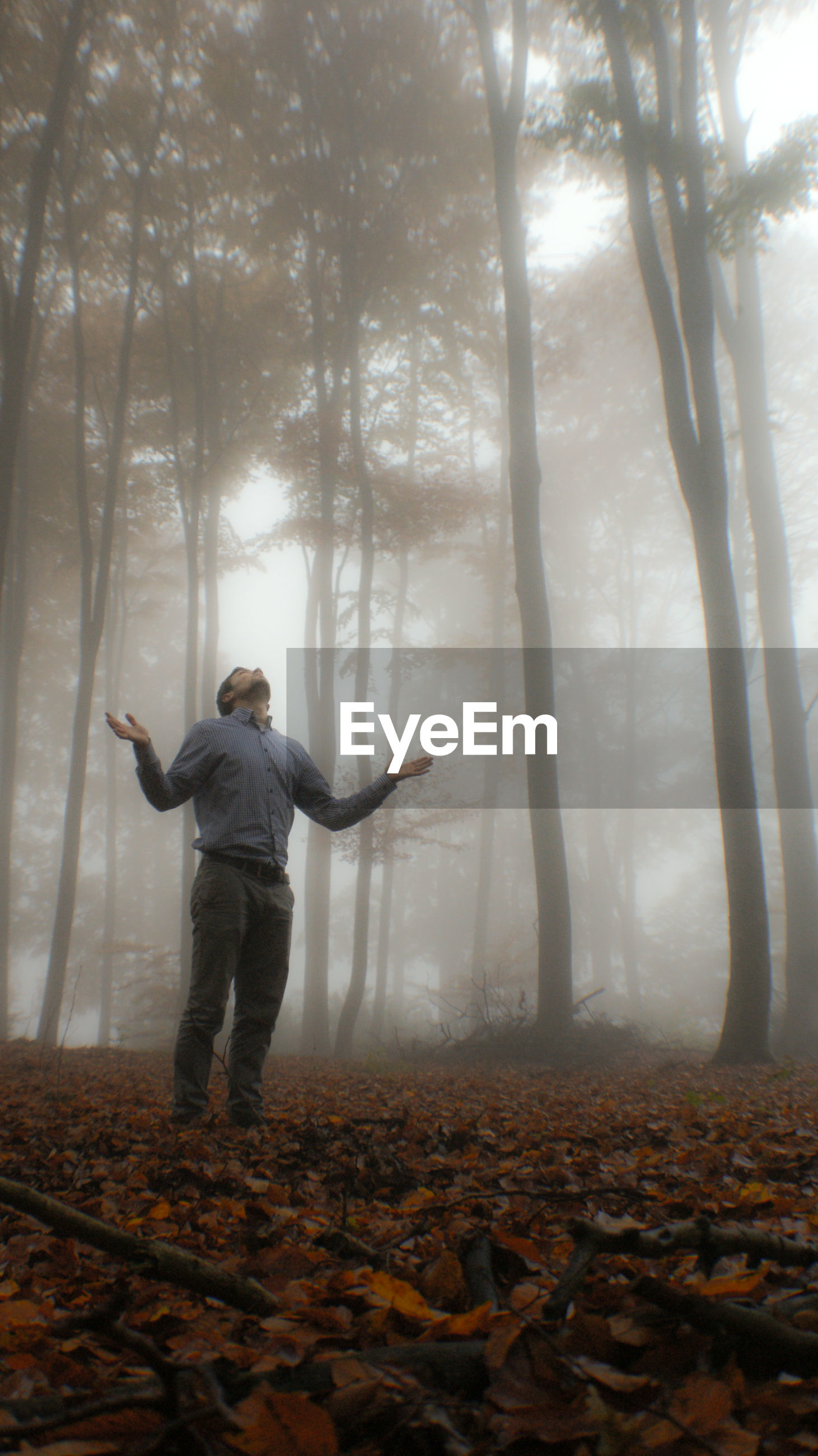 Low angle view of man standing on field against trees during foggy weather