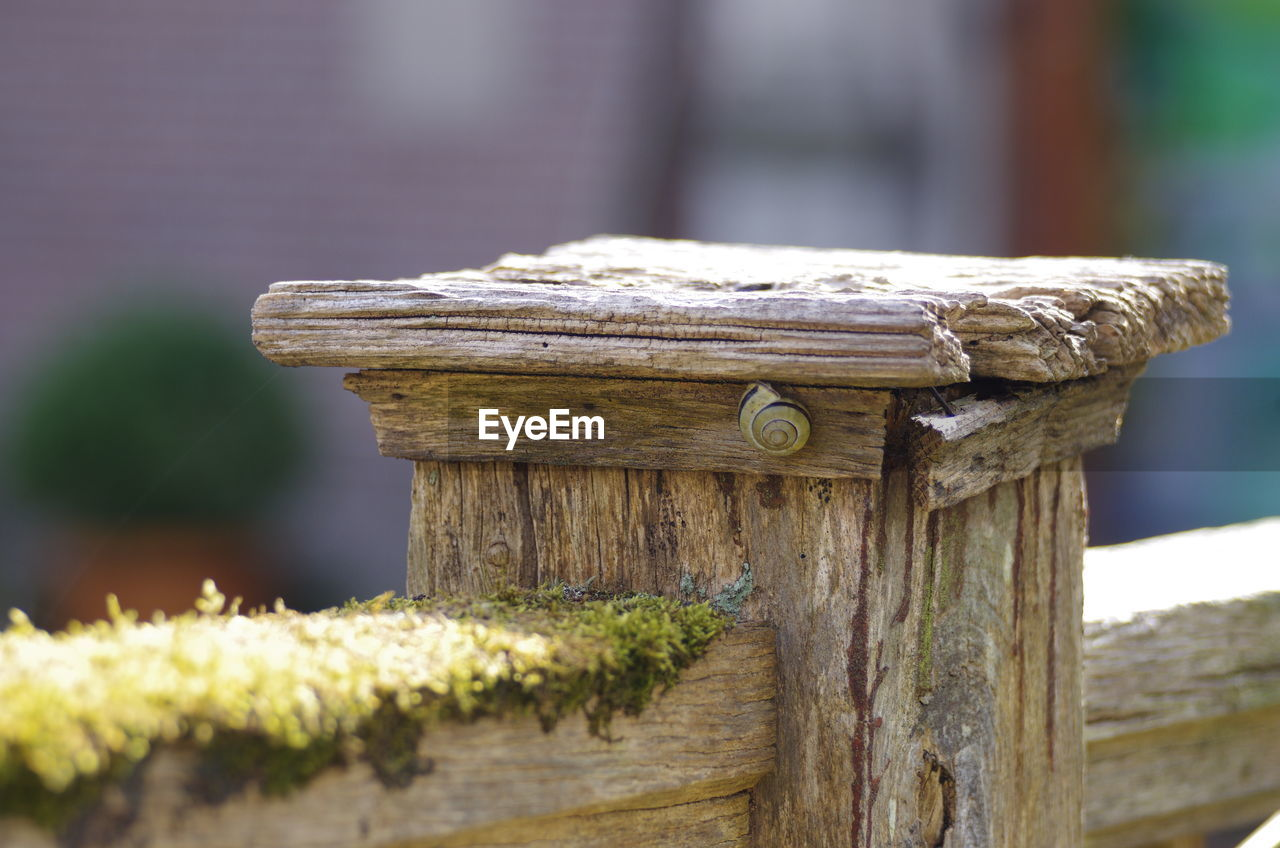 wood - material, focus on foreground, close-up, day, no people, nature, outdoors, selective focus, built structure, plant, architecture, weathered, old, tree, sunlight, pattern, brown, textured, security, post, wooden post