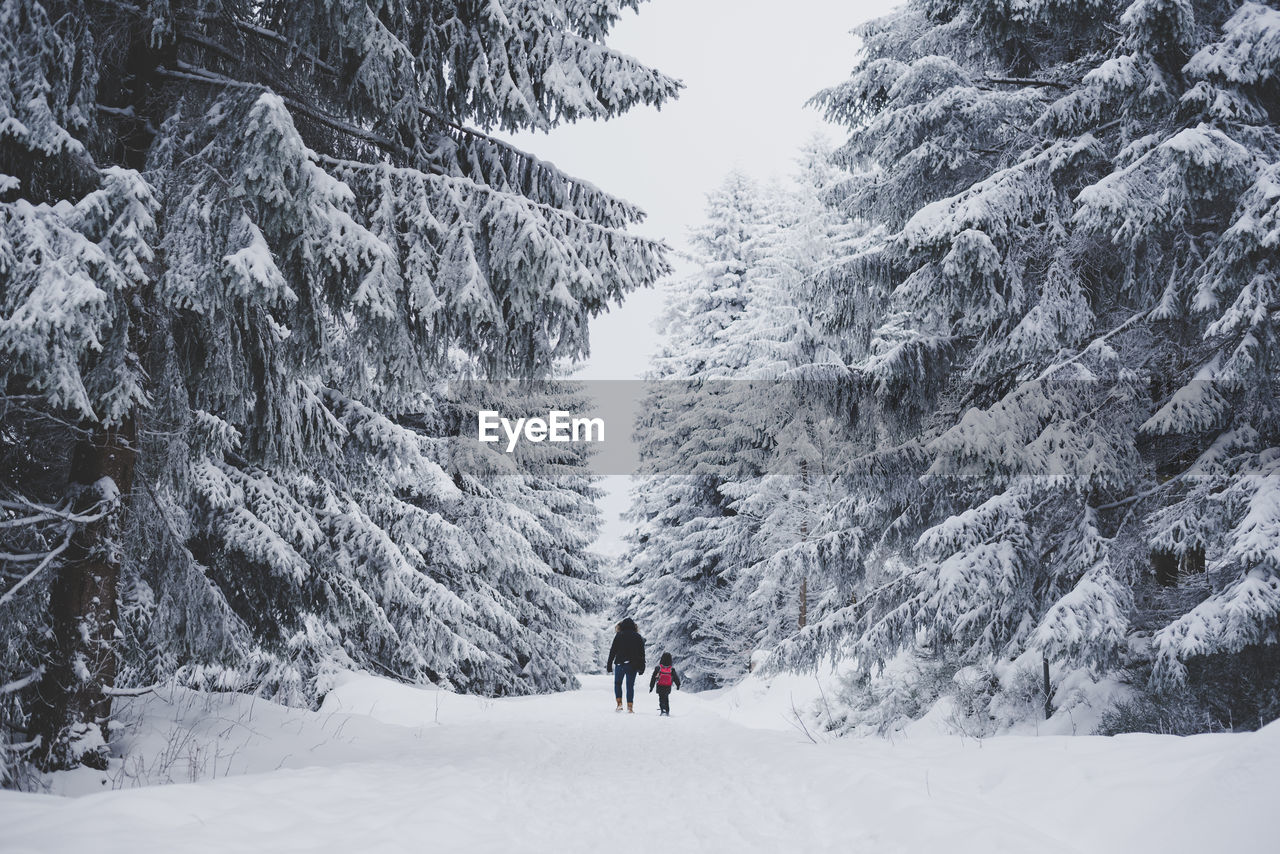 Rear View Of People On Snow Covered Landscape