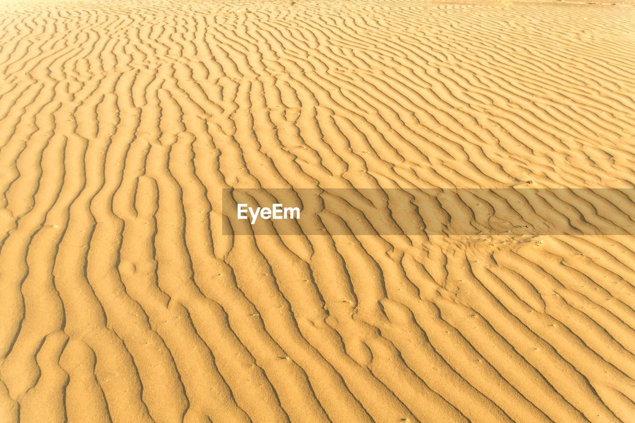 sand, full frame, pattern, backgrounds, sand dune, desert, nature, no people, arid climate, outdoors, summer, beach, day, beauty in nature