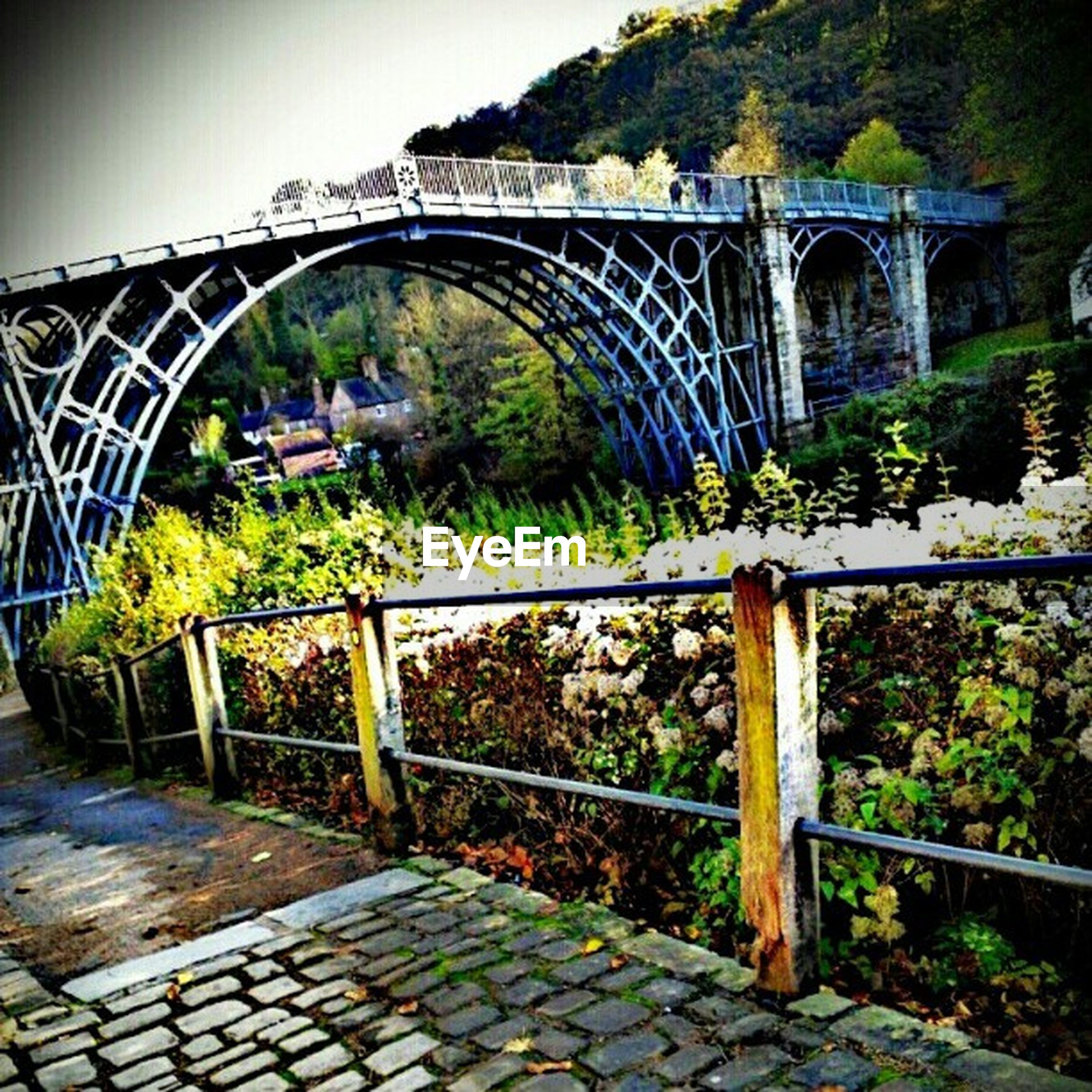 architecture, built structure, bridge - man made structure, connection, arch, railing, footbridge, tree, plant, metal, bridge, transportation, steps, arch bridge, building exterior, steps and staircases, engineering, growth, no people, the way forward