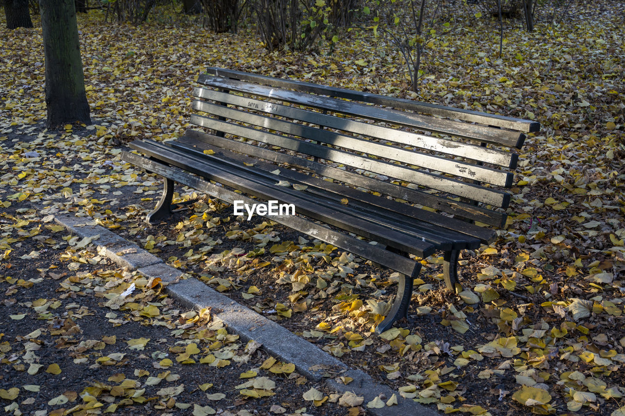 autumn, bench, leaf, plant part, seat, wood - material, empty, nature, park, absence, day, park bench, no people, park - man made space, high angle view, outdoors, change, plant, tree, land, wood, leaves, gravel