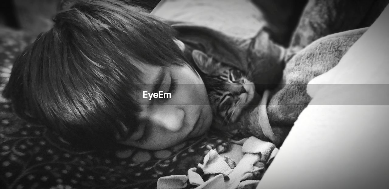 Close-up of boy sleeping with cat on bed