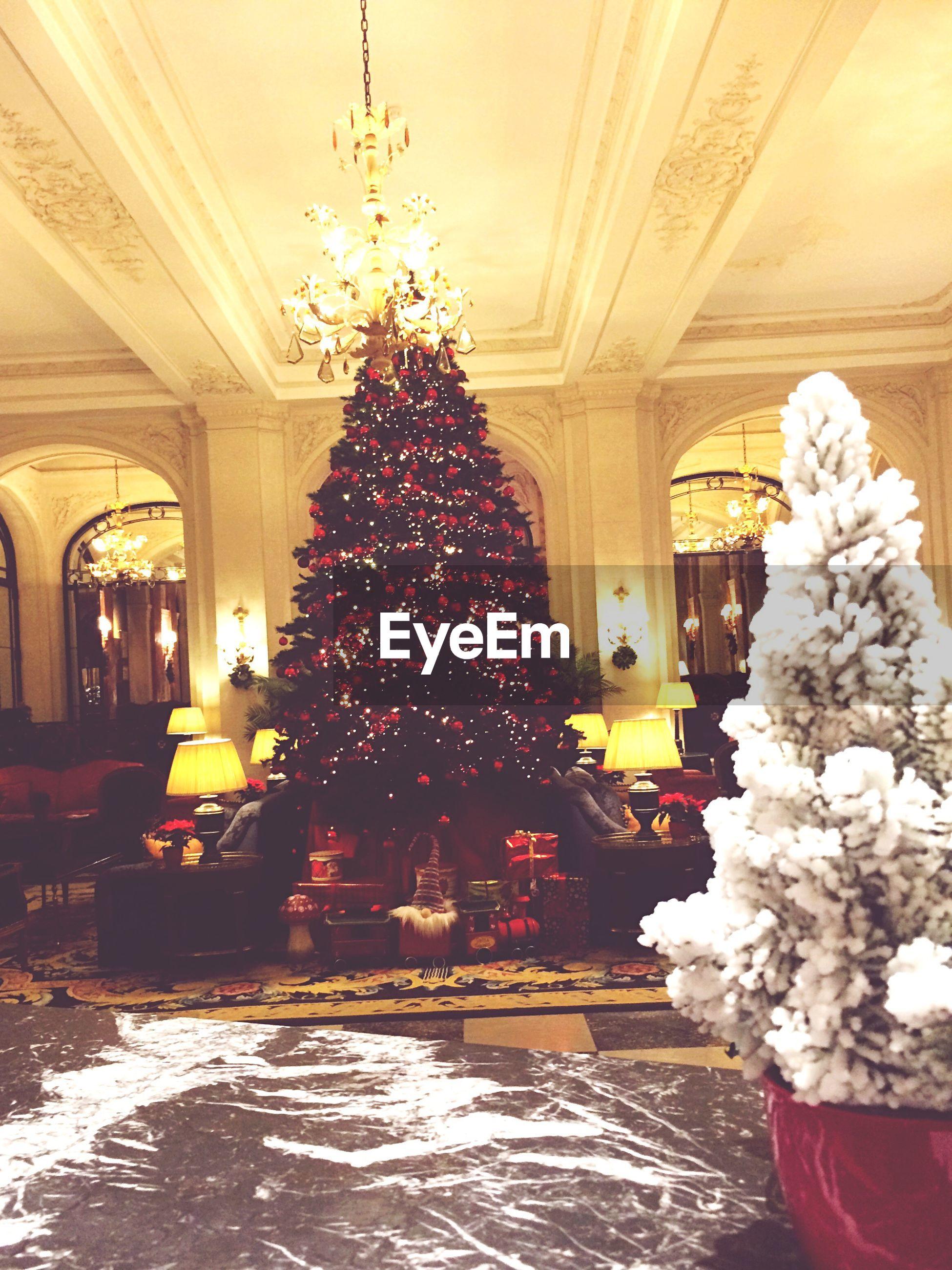 Christmas tree in illuminated hotel