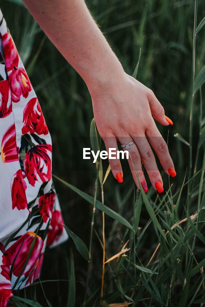 Cropped hand of woman touching plants