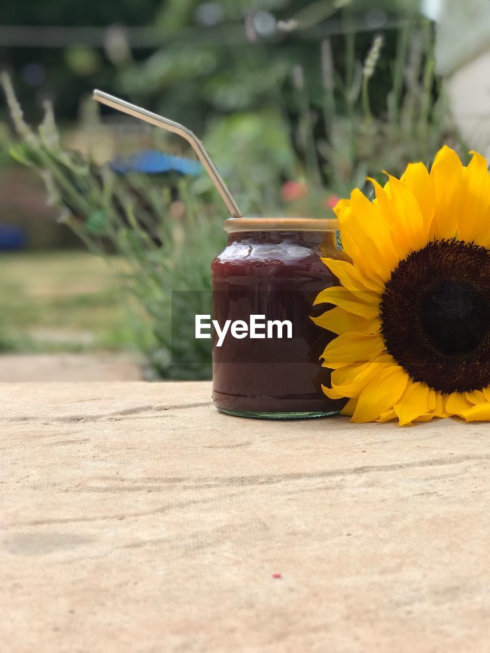flower, flowering plant, plant, yellow, freshness, container, close-up, nature, flower head, petal, table, no people, fragility, vulnerability, focus on foreground, beauty in nature, growth, day, inflorescence, sunflower, outdoors, temptation
