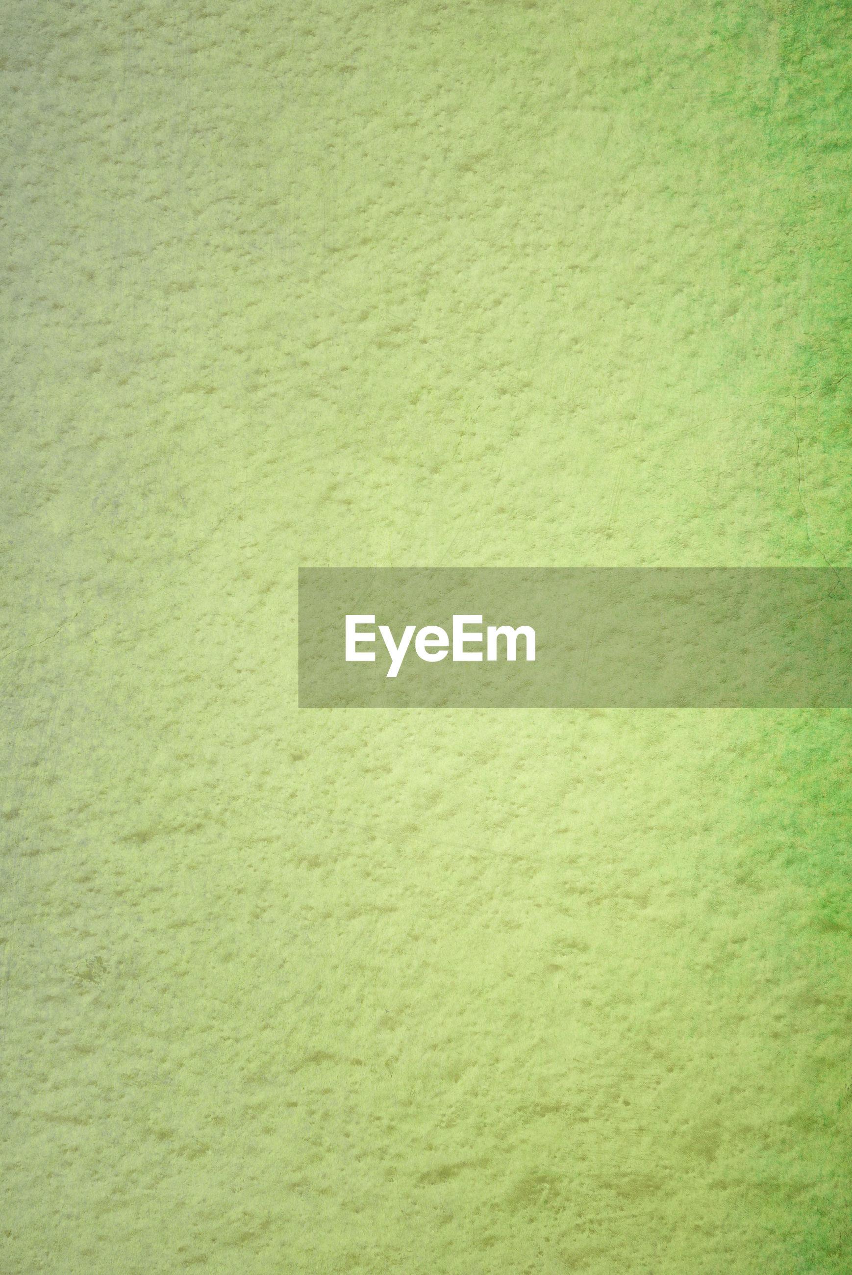 Full frame shot of rough green wall
