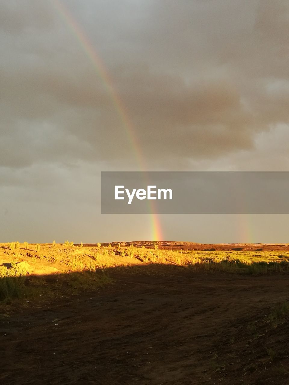 rainbow, scenics, beauty in nature, double rainbow, nature, tranquil scene, tranquility, sky, landscape, cloud - sky, weather, field, idyllic, outdoors, no people, day, storm cloud, mammal