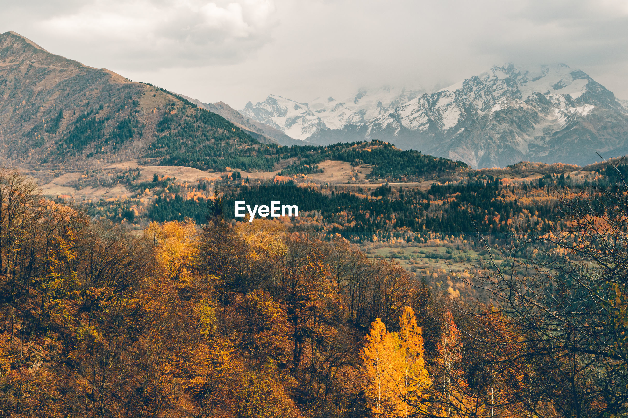 Beautiful autumn mountain landscape photo with yellow and orange color.