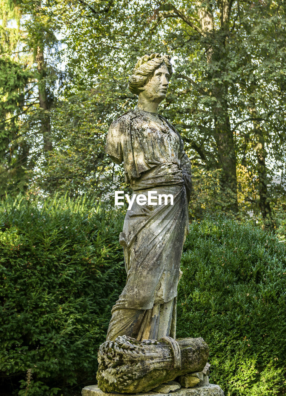 statue, human representation, sculpture, male likeness, tree, no people, outdoors, low angle view, day, nature