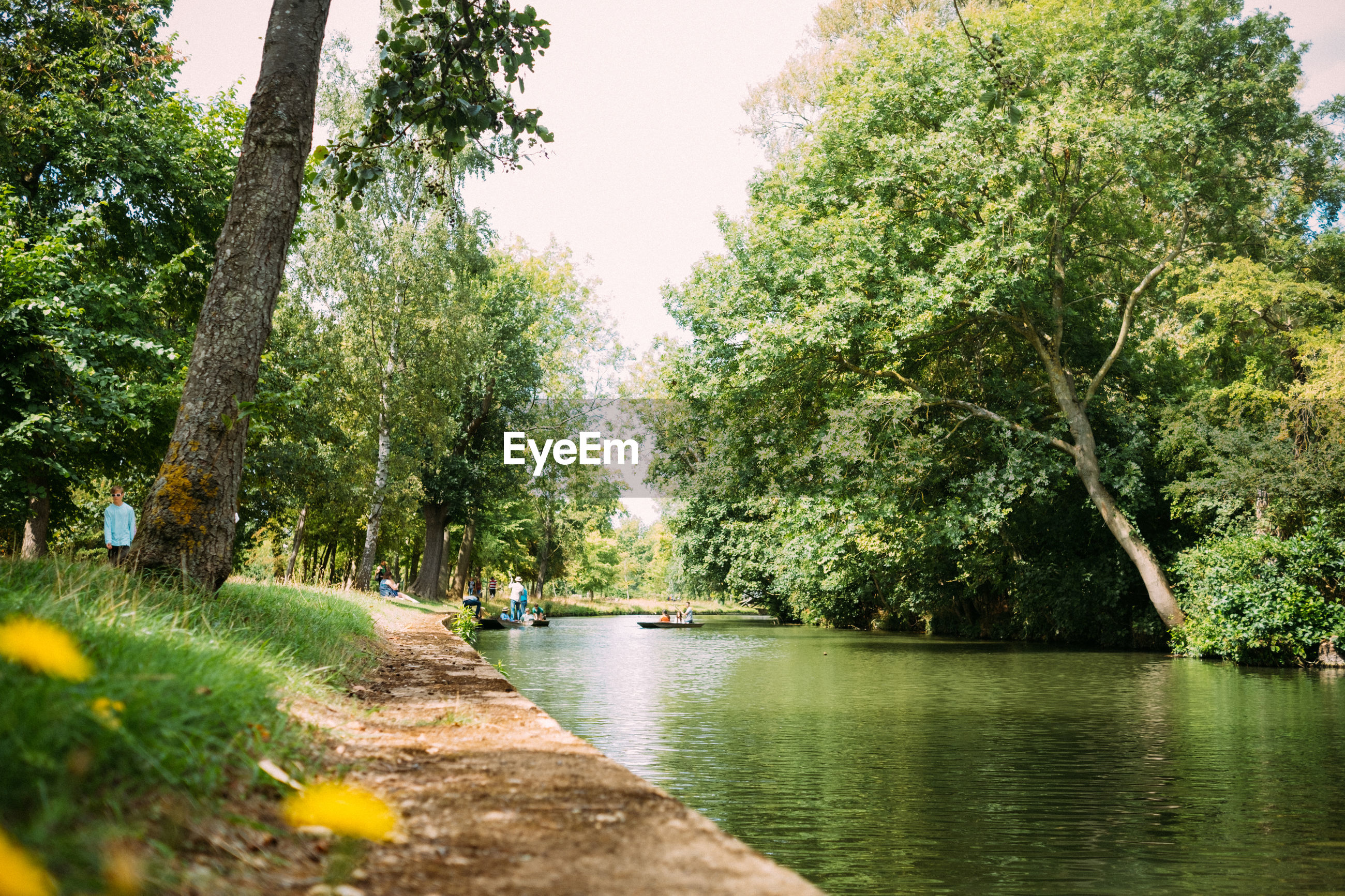 Scenic view of river against sky with trees