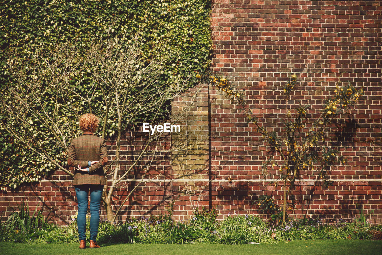 brick wall, one person, outdoors, casual clothing, rear view, day, standing, real people, grass, tree, full length, building exterior, people, nature, adult, adults only