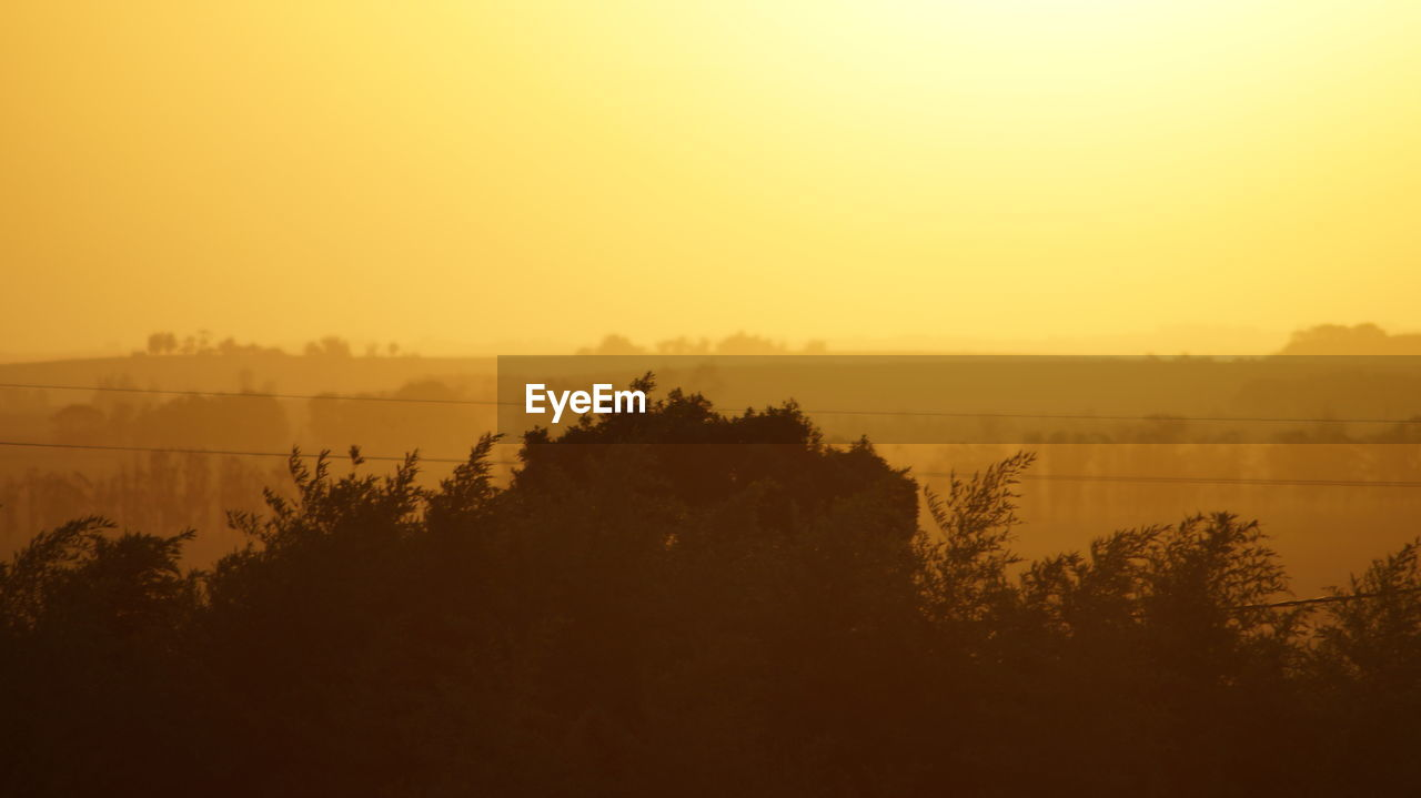 sky, tranquil scene, scenics - nature, beauty in nature, tranquility, tree, sunset, fog, nature, water, copy space, no people, plant, non-urban scene, environment, idyllic, silhouette, orange color, outdoors, hazy