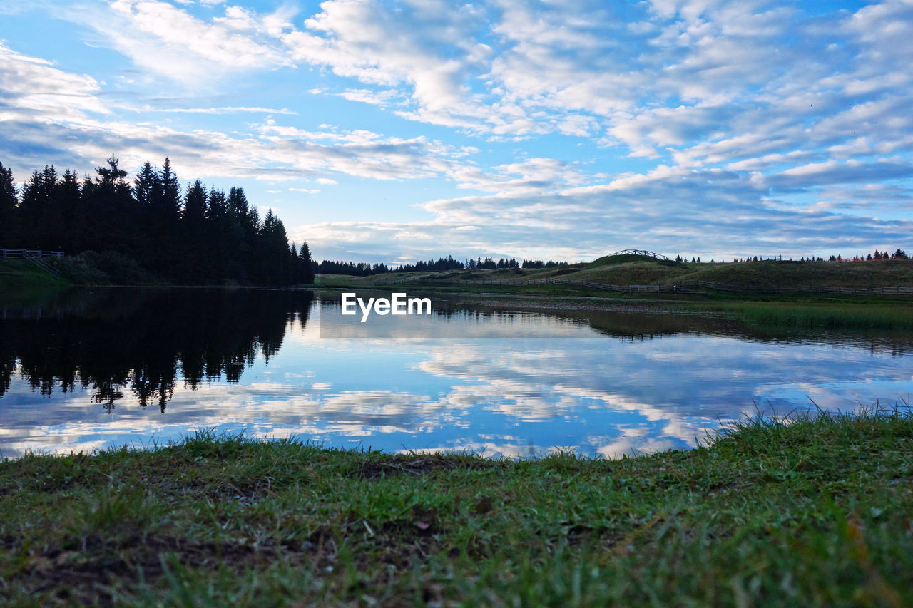 water, sky, reflection, cloud - sky, tranquility, scenics - nature, beauty in nature, lake, tranquil scene, plant, nature, no people, tree, non-urban scene, grass, idyllic, day, growth, landscape