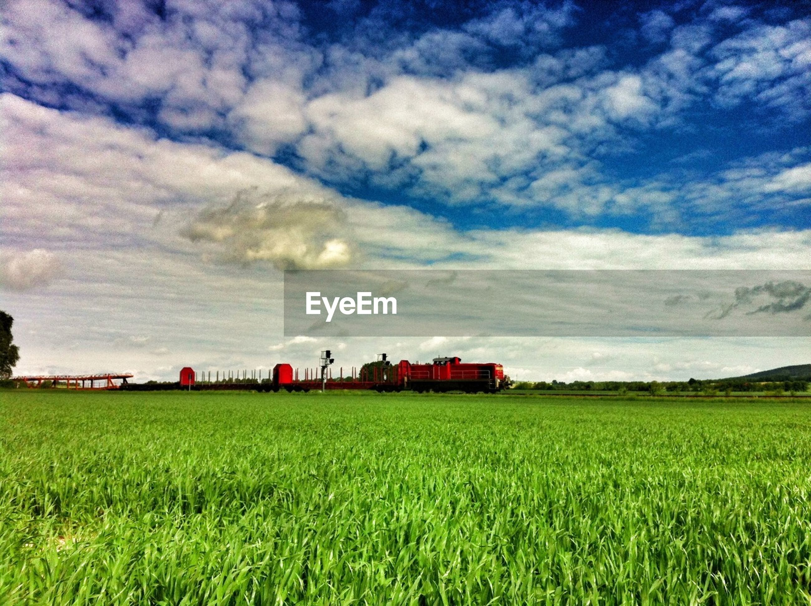 Freight train by grassy field against cloudy sky