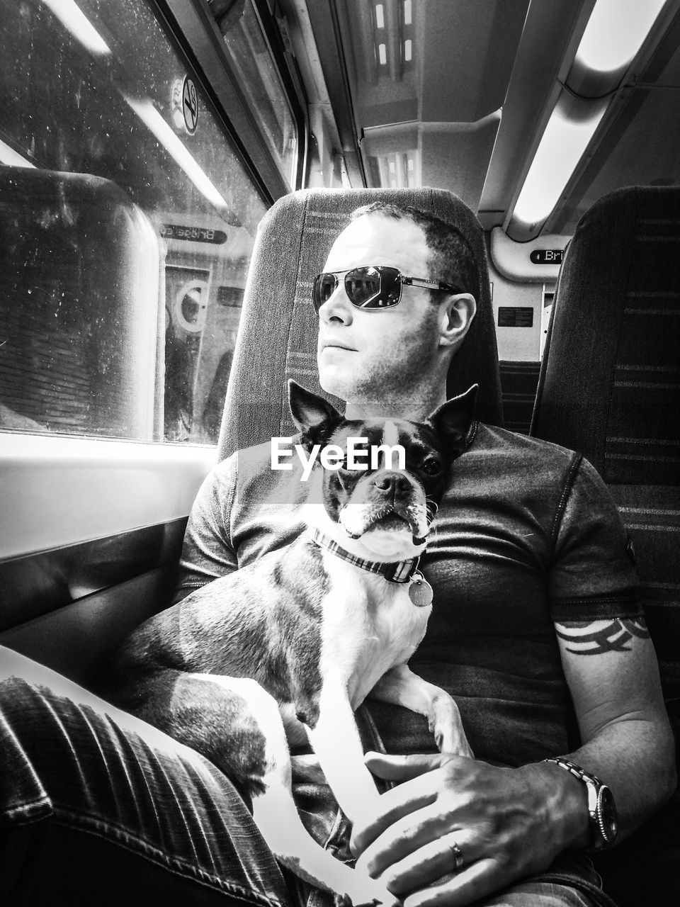 Mature man with dog sitting in train