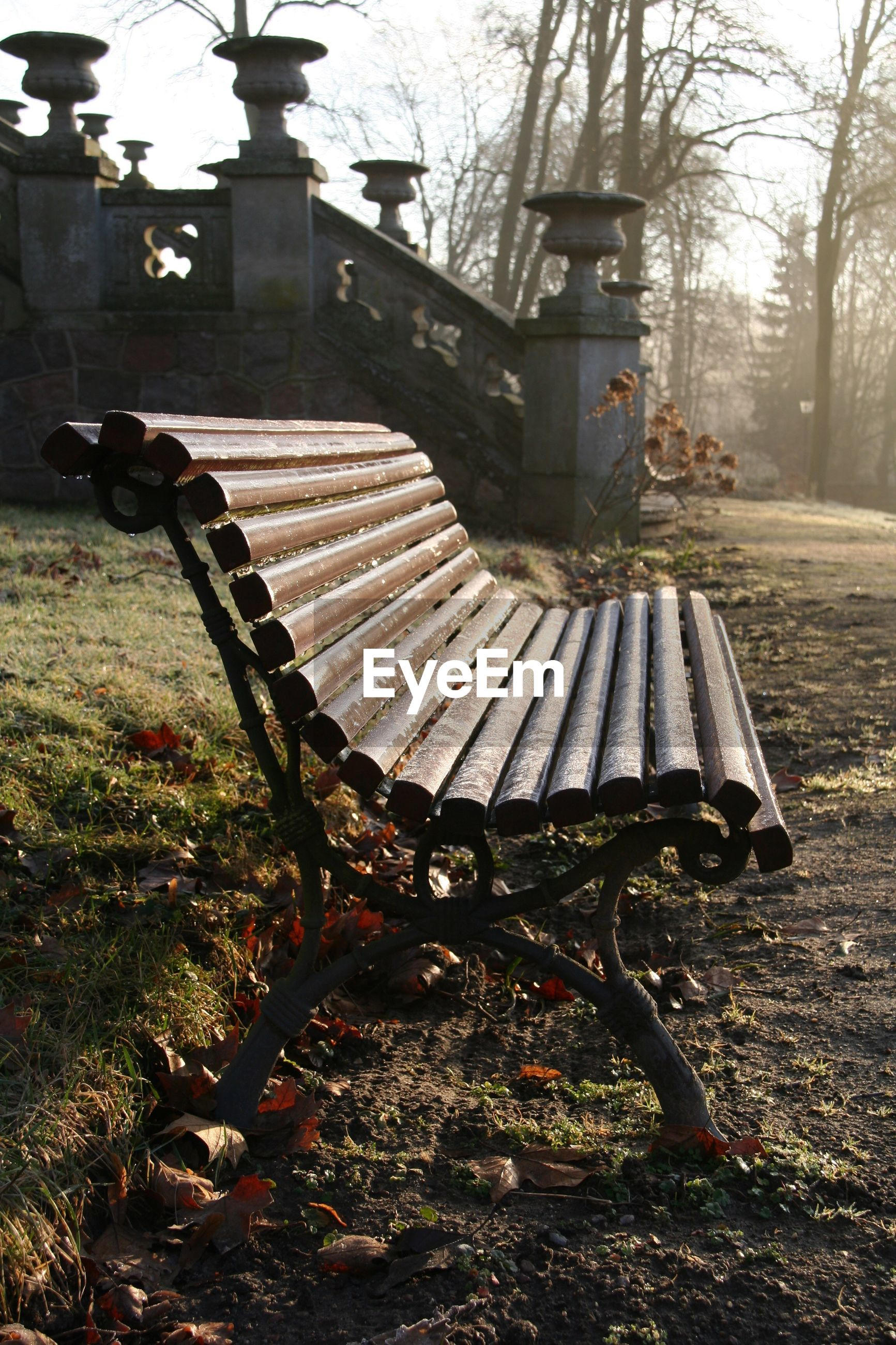 EMPTY BENCH ON FIELD IN PARK DURING SUNNY DAY