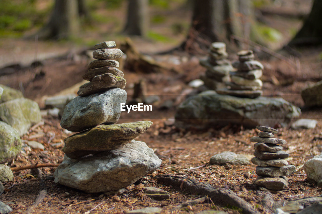 Stack of rocks on land in forest