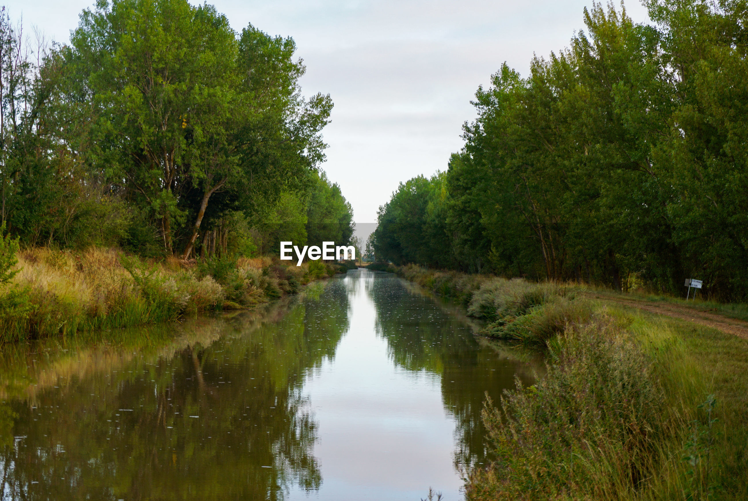 RIVER AMIDST TREES AGAINST SKY