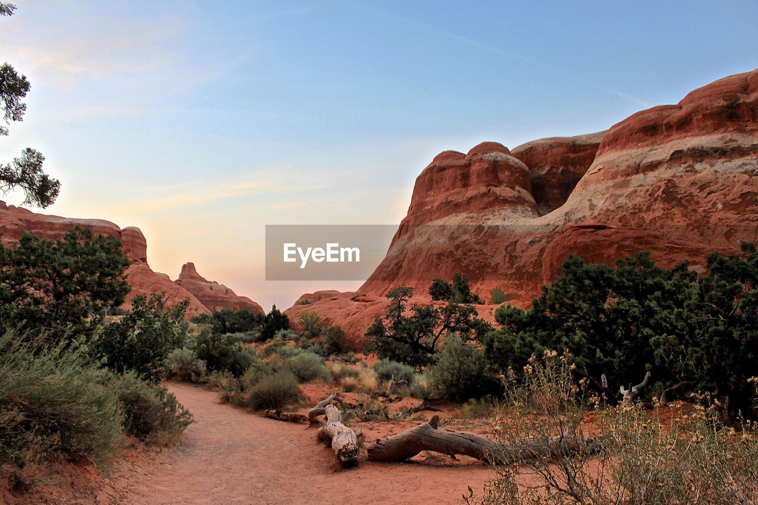 Scenic view of rock formation and plants against sky during sunset at arches national park