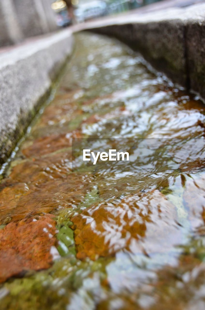 close-up, water, no people, day, selective focus, plant, nature, outdoors, focus on foreground, high angle view, reflection, footpath, freshness, wet, growth, tree, rock, leaf, flowing water