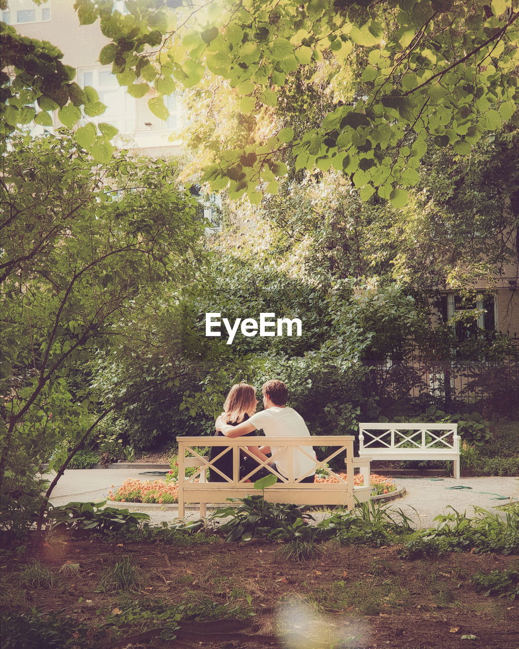 Rear view of couple sitting on bench against trees