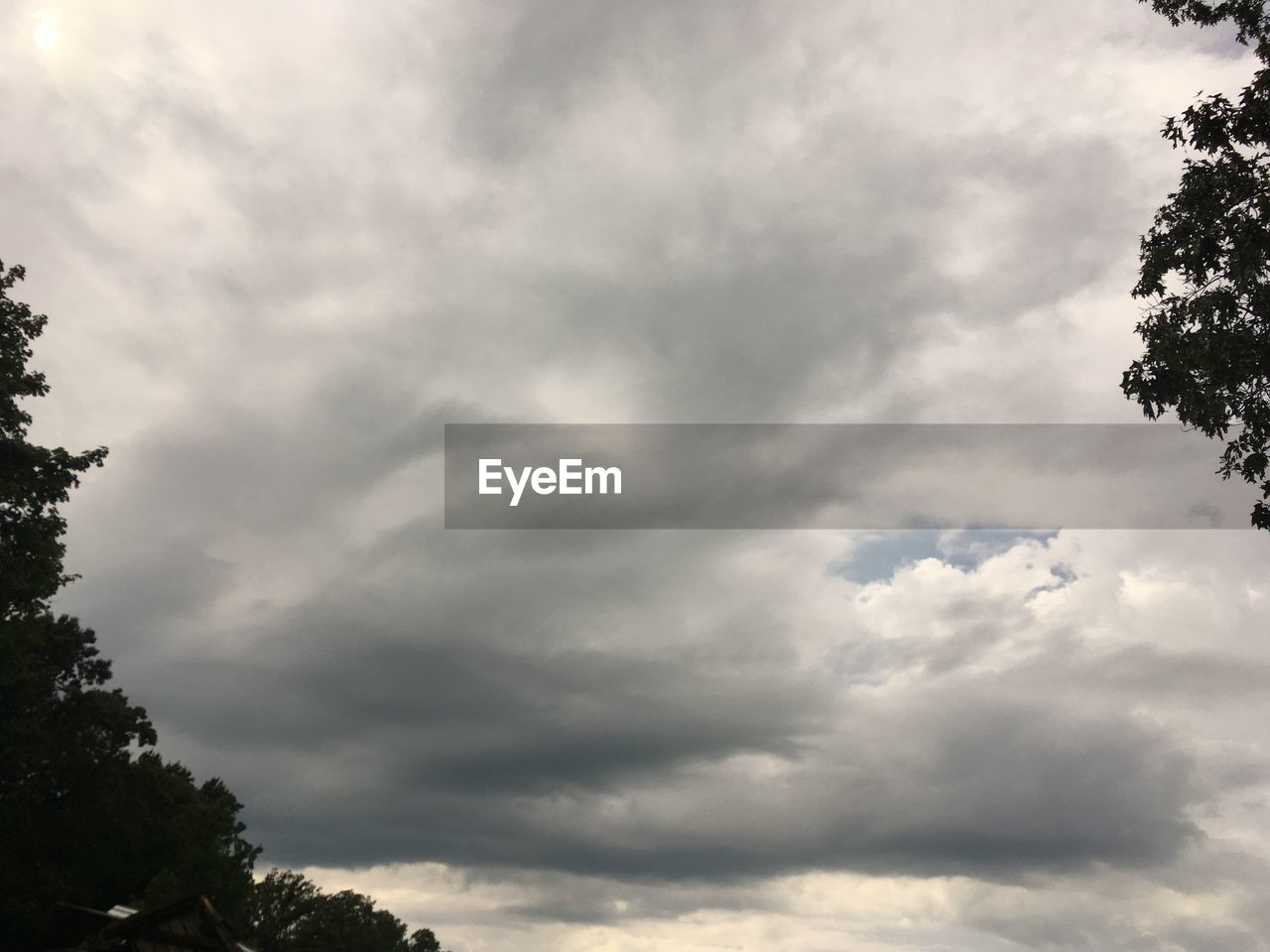 cloud - sky, sky, tree, beauty in nature, low angle view, plant, nature, day, no people, tranquility, outdoors, scenics - nature, tranquil scene, growth, overcast, storm, idyllic, cloudscape, treetop, ominous