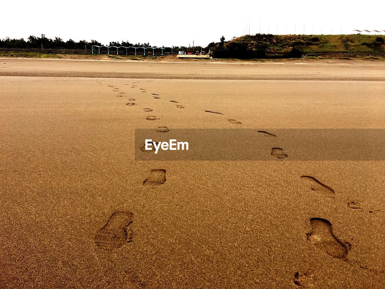 footprint, beach, sand, paw print, day, outdoors, no people, tranquility, nature, beauty in nature, sky