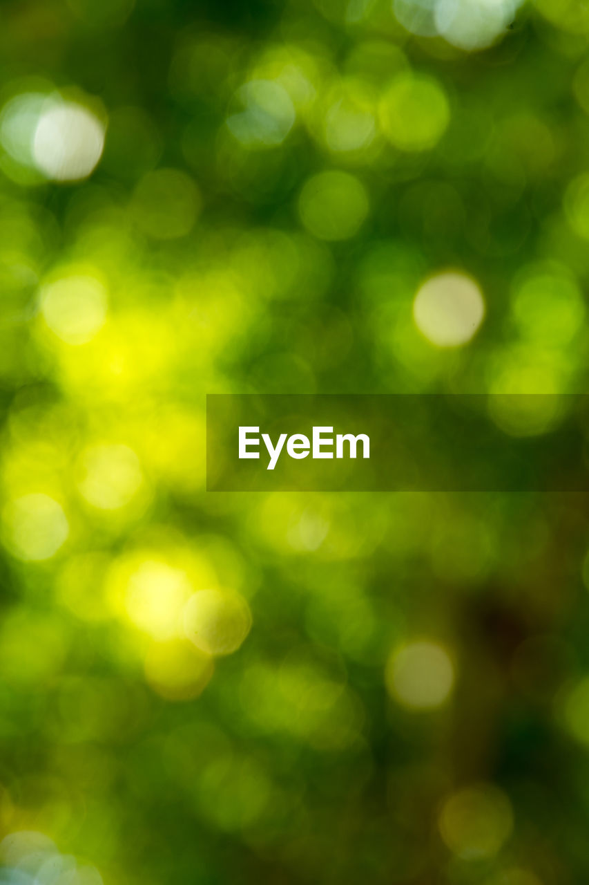 defocused, green color, pattern, backgrounds, illuminated, abstract, no people, outdoors, night, close-up, beauty in nature, nature
