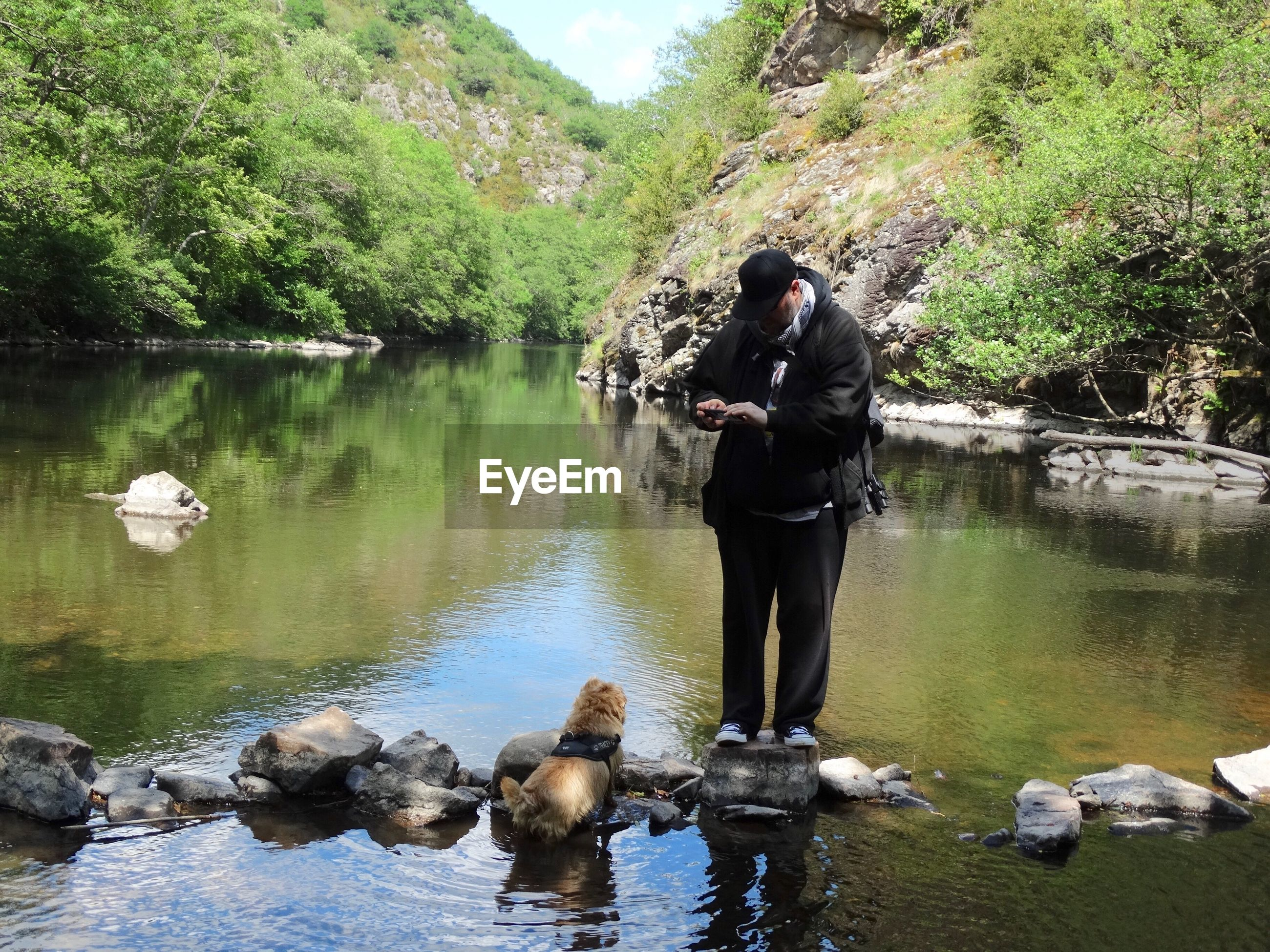 Full length of man photographing dog while standing amidst river