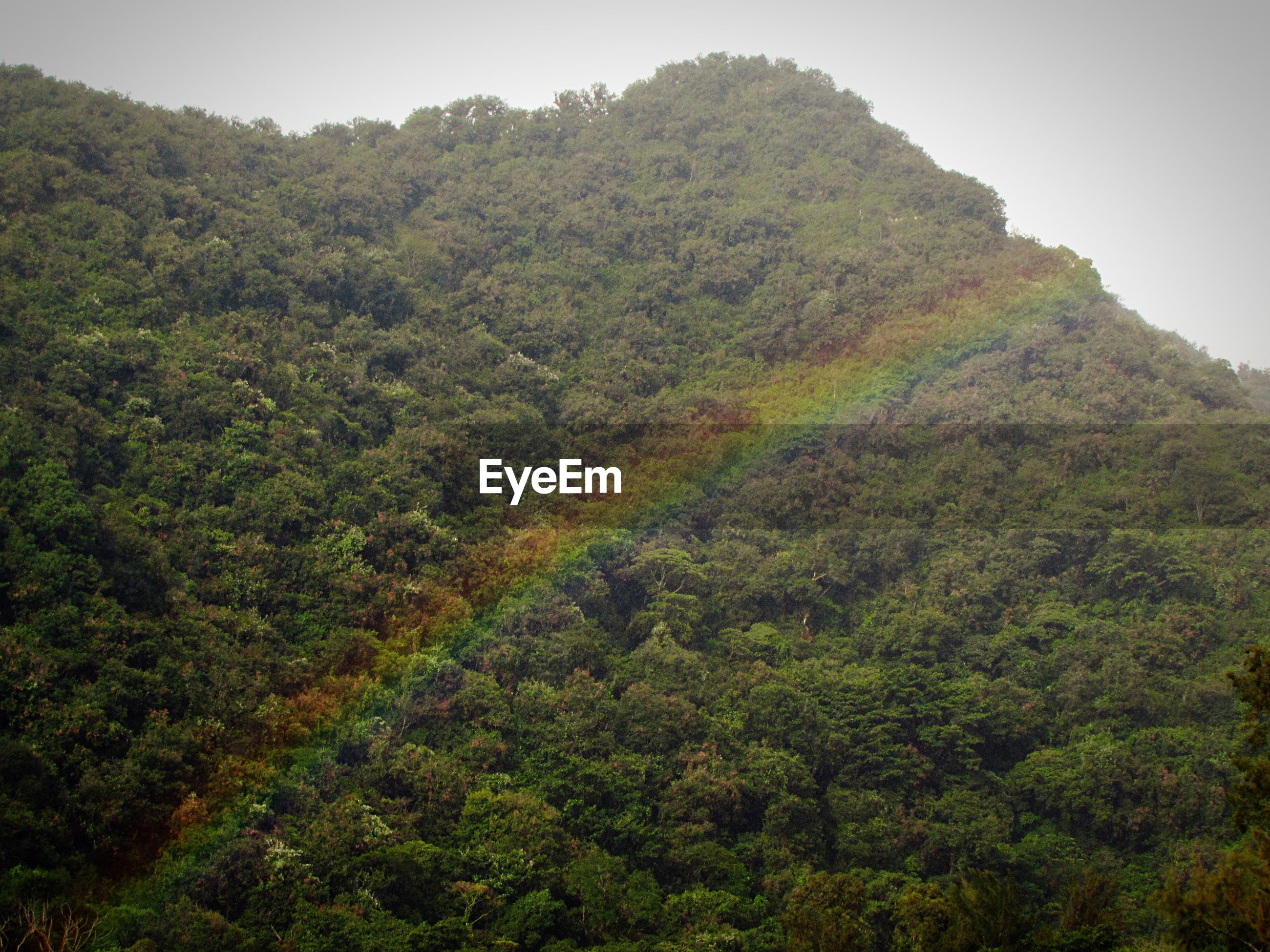 Scenic view of rainbow over mountain