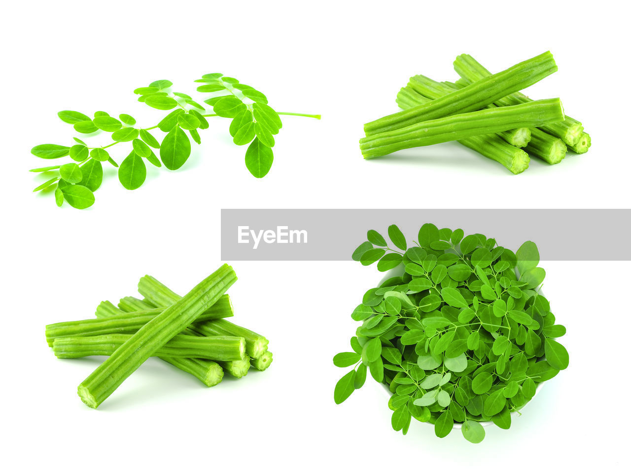 green color, food and drink, freshness, vegetable, food, healthy eating, wellbeing, white background, studio shot, indoors, still life, no people, raw food, large group of objects, close-up, plant part, high angle view, leaf, bean, green, herb, chopped, leaves, vegetarian food