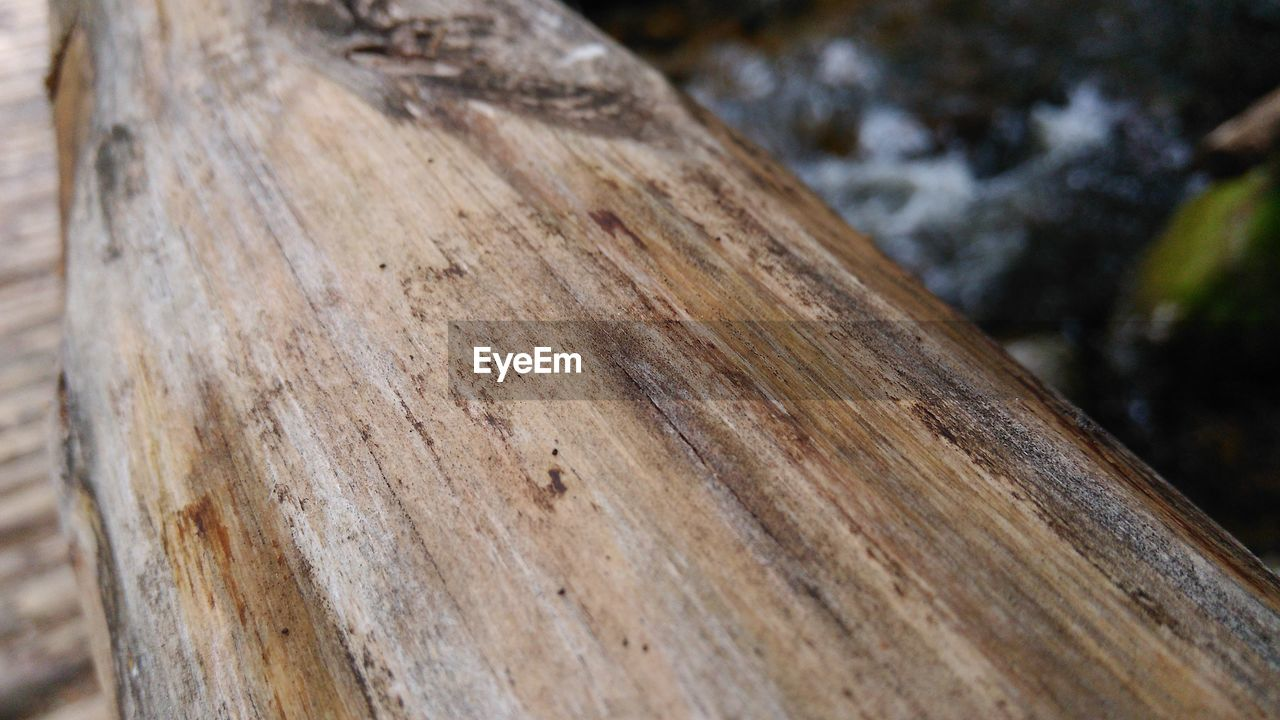 wood - material, close-up, day, no people, outdoors, textured, tree trunk, nature, focus on foreground, rough, tree, tree ring