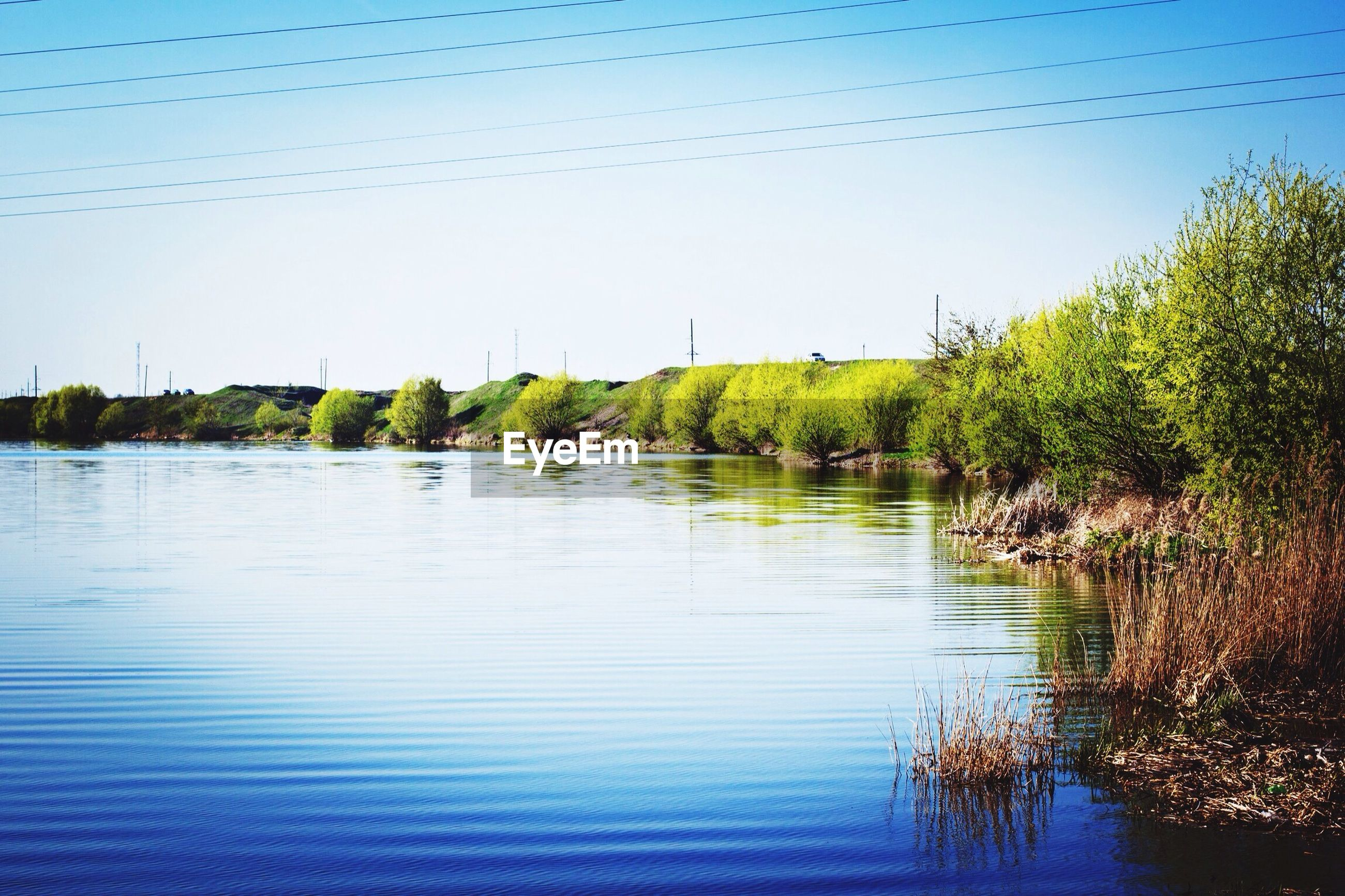clear sky, water, tree, tranquility, tranquil scene, copy space, blue, lake, scenics, reflection, nature, beauty in nature, waterfront, river, plant, growth, calm, rippled, outdoors, day