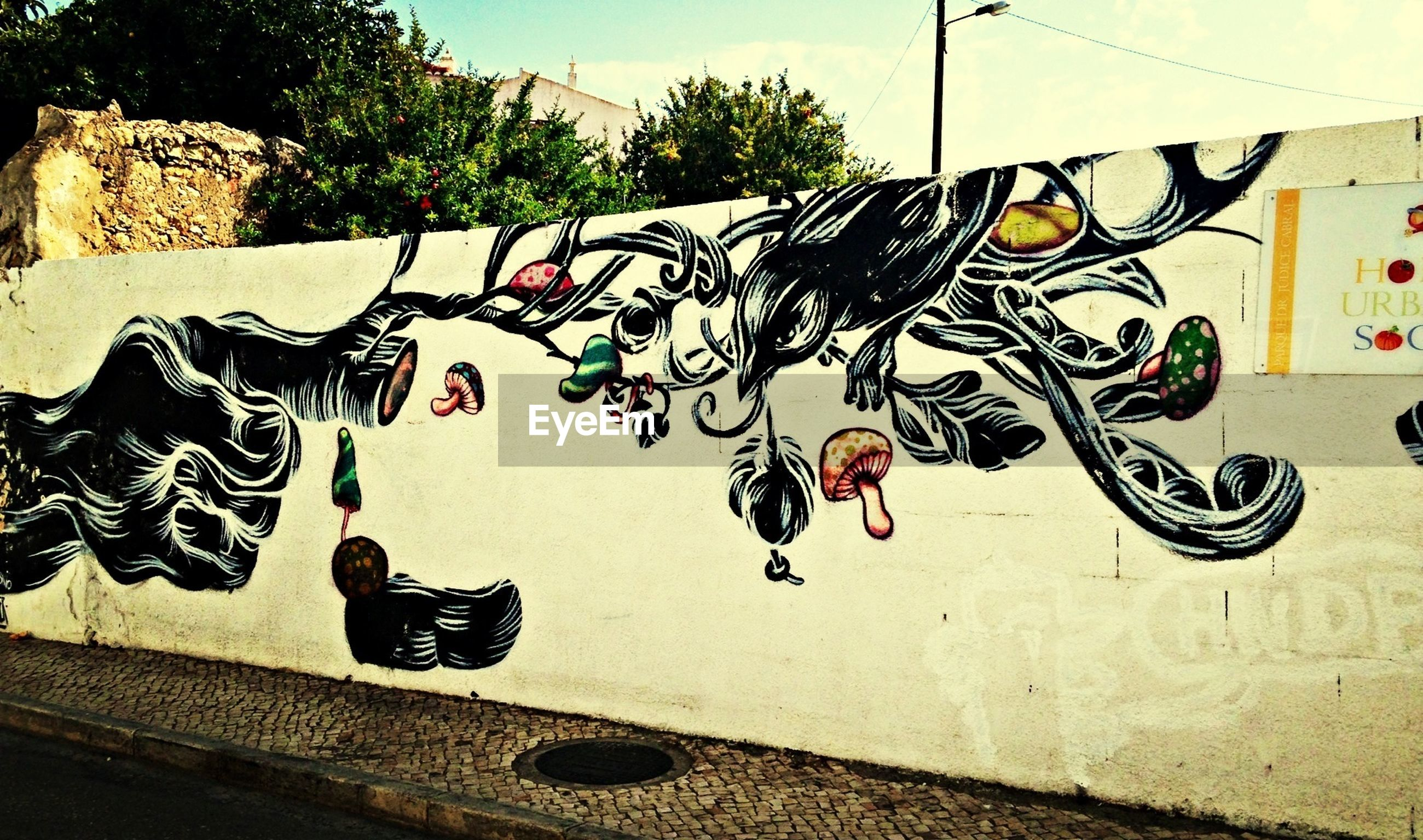 graffiti, art, creativity, art and craft, wall - building feature, built structure, architecture, building exterior, wall, street art, shadow, text, multi colored, day, no people, sunlight, outdoors, human representation, street, house