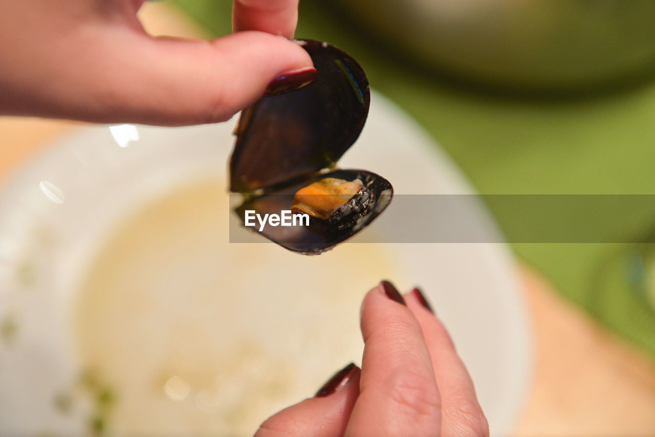 Close-Up Of Woman Holding Clam