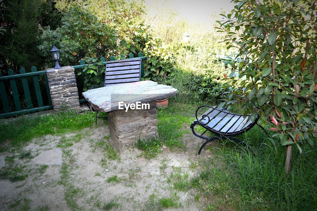 growth, front or back yard, grass, plant, tree, day, outdoors, no people, chair, nature, table, seat