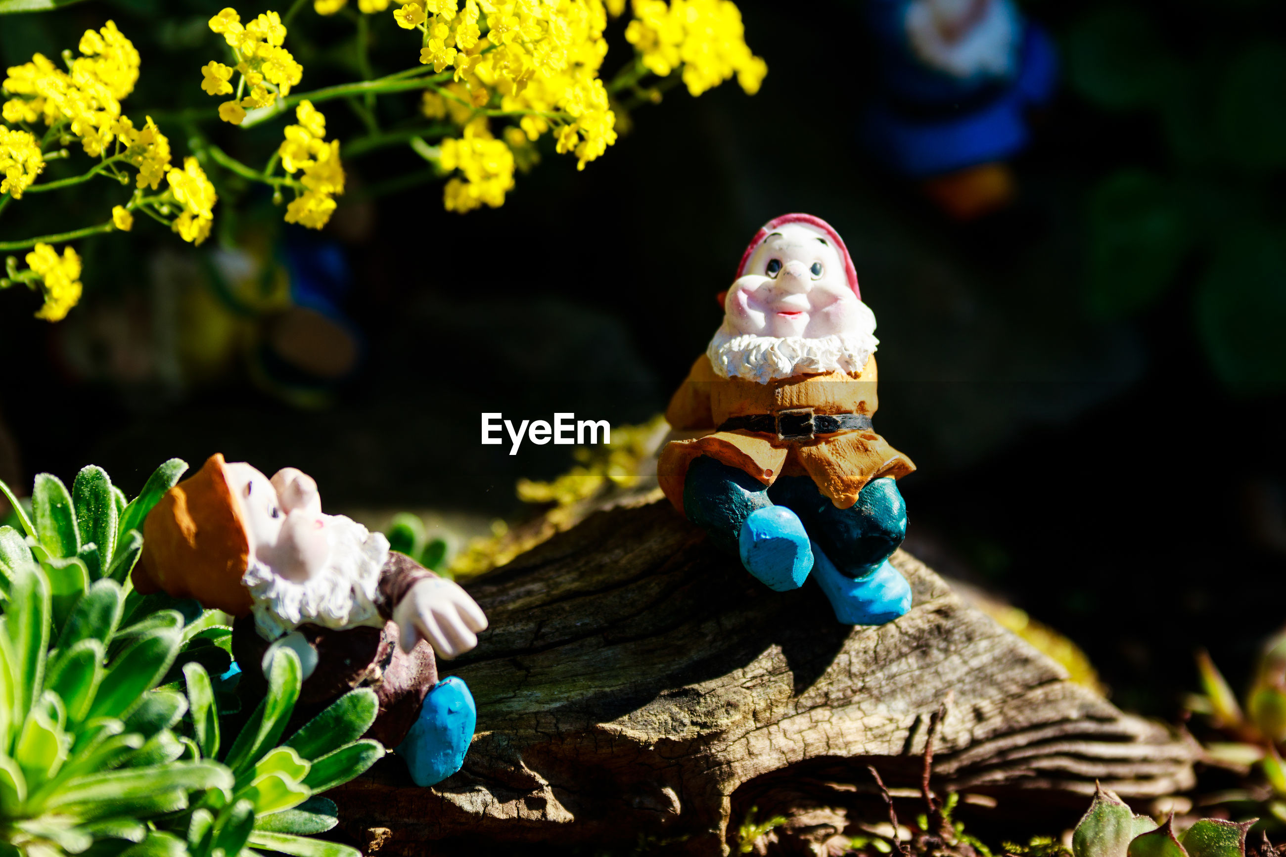 CLOSE-UP OF FIGURINE WITH TOY AND PLANTS