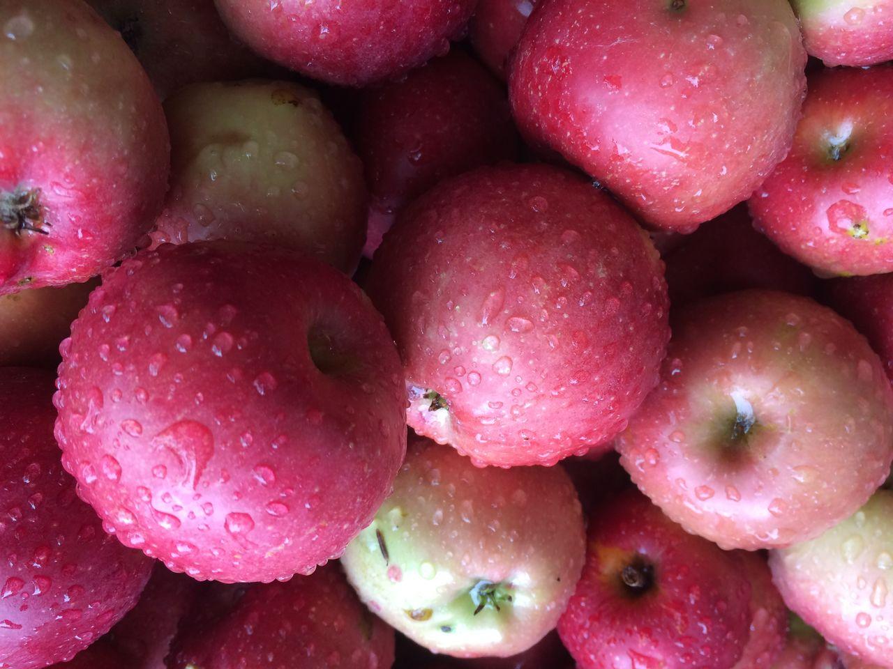 Full frame shot of wet apples for sale