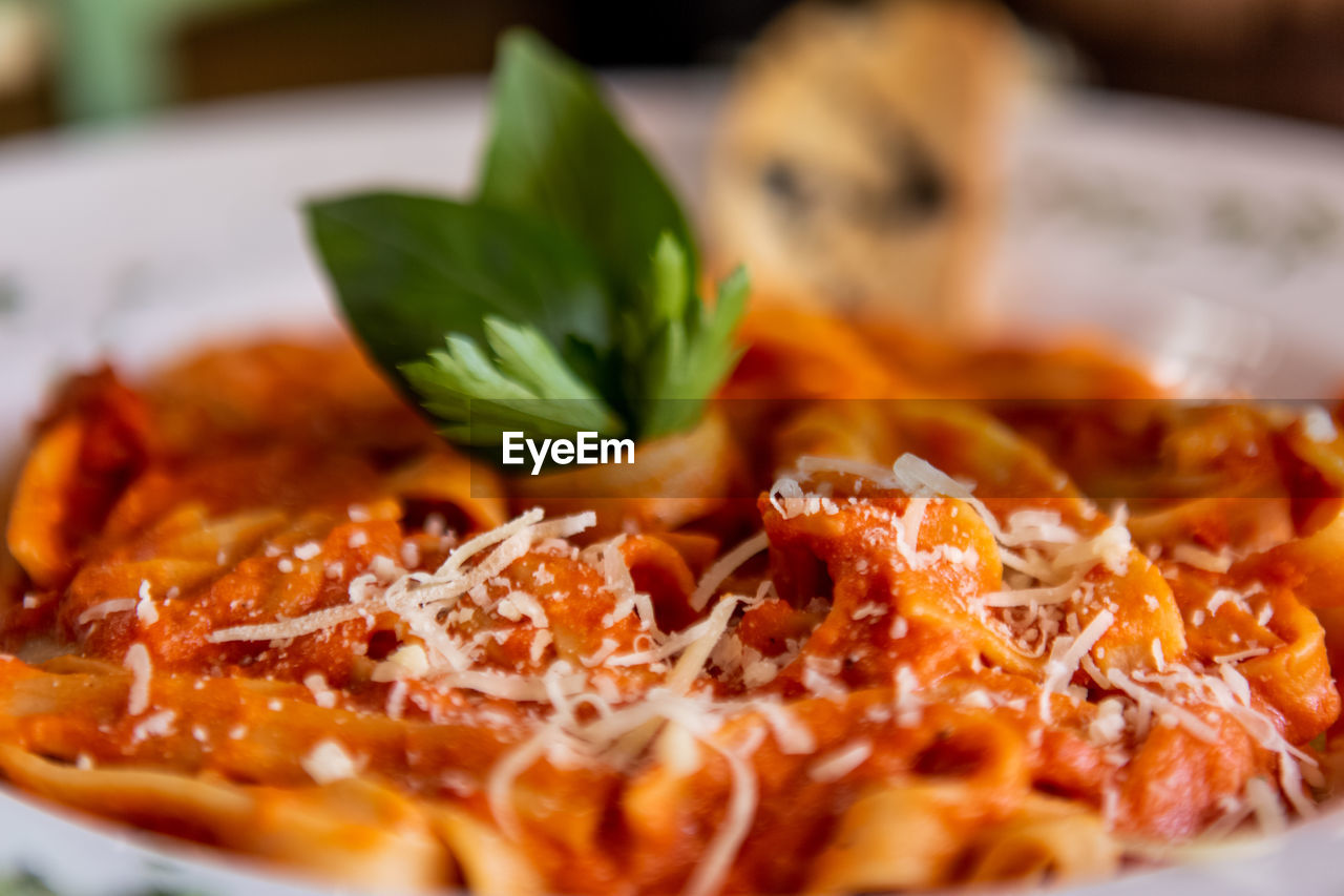 food, food and drink, ready-to-eat, freshness, plate, serving size, close-up, indoors, still life, healthy eating, selective focus, no people, wellbeing, indulgence, vegetable, herb, meal, leaf, plant part, italian food, garnish, temptation, tomato sauce, dinner, chopped
