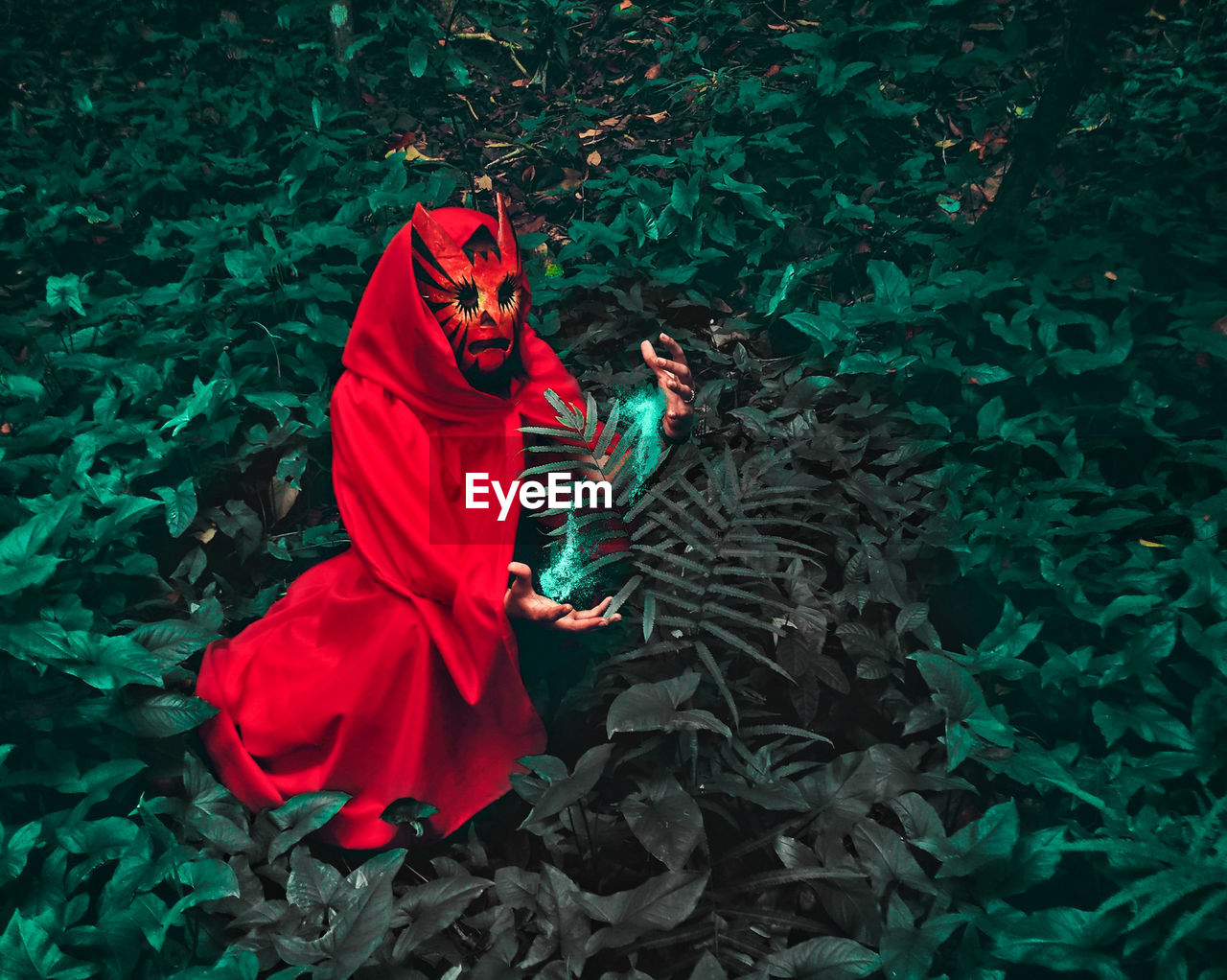 Rear View Of Person Wearing Red Cape And Mask By Plants In Forest