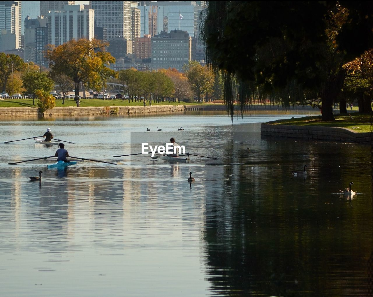 water, river, real people, architecture, rowing, nature, tree, city, outdoors, teamwork, men, sport, day, sculling, people