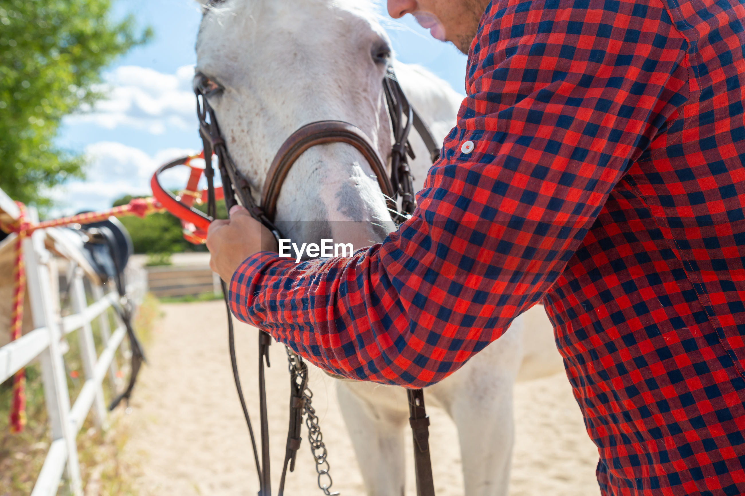Man adjusting bridle of horse at ranch
