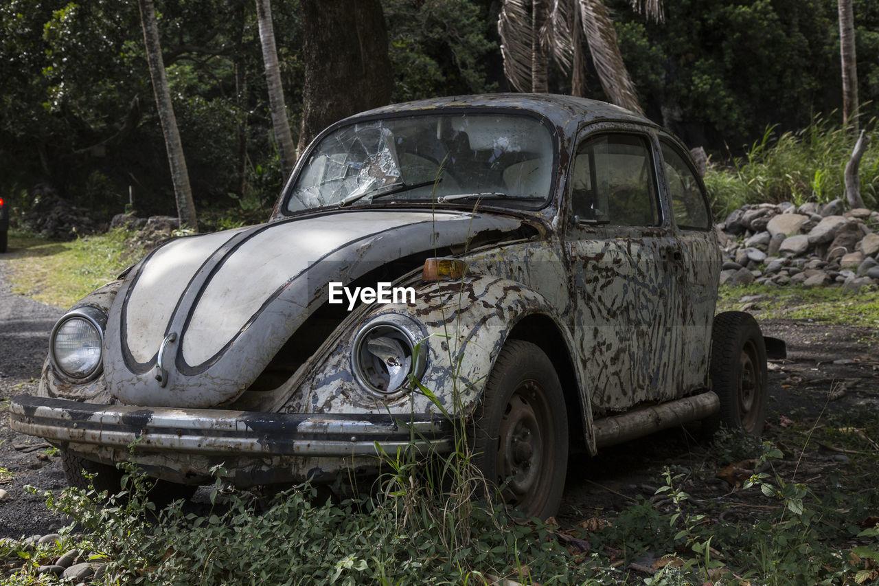 abandoned, car, damaged, transportation, destruction, tree, no people, day, outdoors
