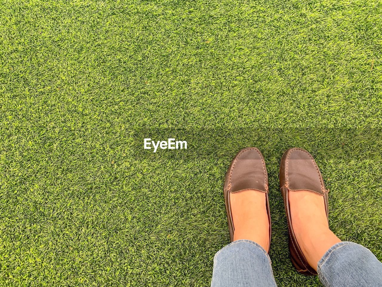 human leg, low section, body part, human body part, grass, one person, shoe, green color, personal perspective, plant, lifestyles, real people, high angle view, leisure activity, standing, nature, day, unrecognizable person, limb, human foot, human limb, outdoors, sock, jeans