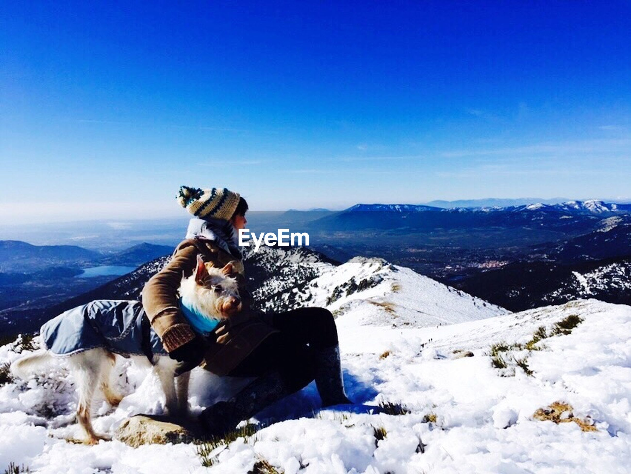 snow, winter, cold temperature, mountain, domestic animals, dog, pets, mammal, landscape, animal themes, one animal, blue, season, mountain range, sky, clear sky, rock - object, snowcapped mountain, tranquil scene, full length